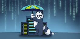 SSL-сертификат — полная инструкция для бизнеса