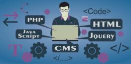 Как стать веб-разработчиком за 5 месяцев: пошаговое руководство