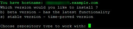 Установка ISPmanager 5 Lite на Linux-4-1