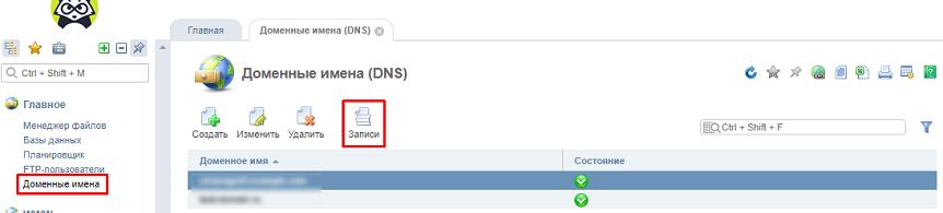 Добавление txt-записи в домен